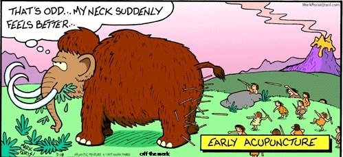 """A comic depicting a woolly Mammoth saying """"that's odd... my neck suddenly feels better"""" behind him we see cave people throwing spears into his legs and butt"""